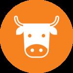 Allevamenti di qualità | Montecanto