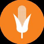 Prodotti agricoli | Montecanto